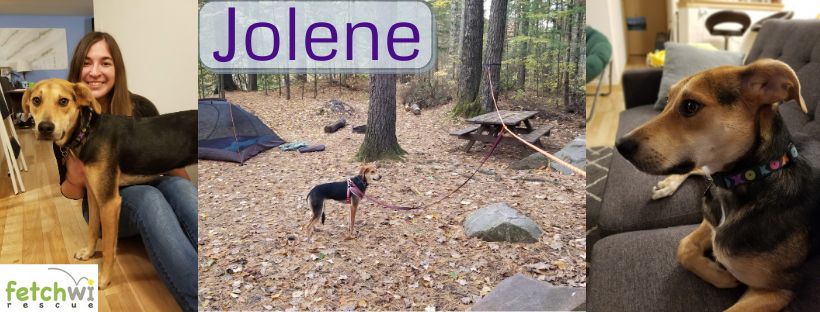 Jolene collage